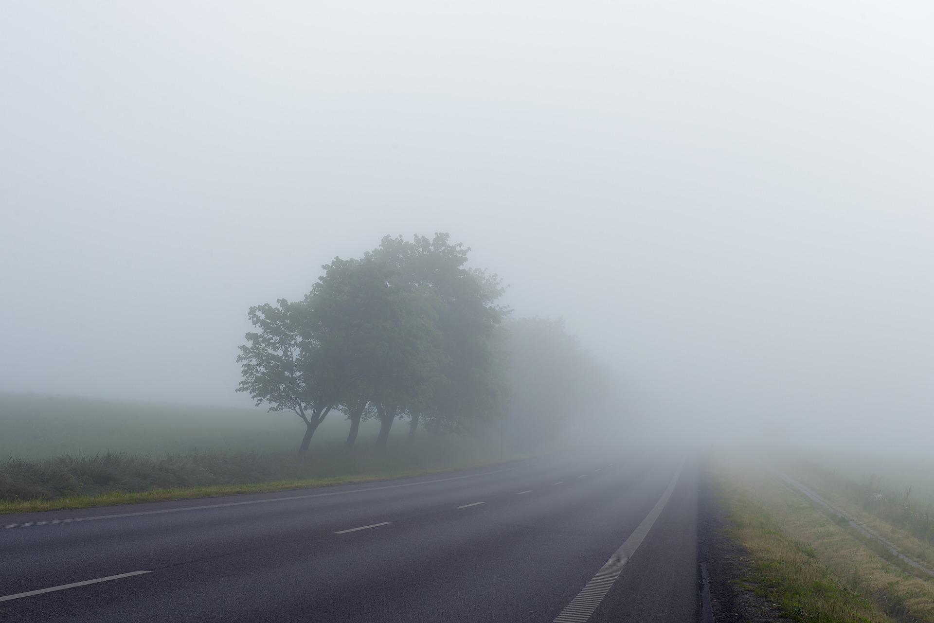 En väg som försvinner in i dimma. Vid sidan av vägen står några träd som bara anas i dimman.